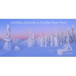 Talvi-ihmemaa II - 10x20cm joulukortti