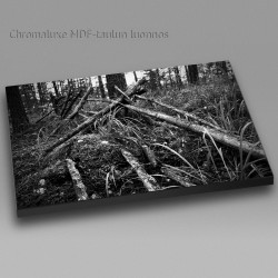 Fallen fence - Chromaluxe picture