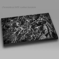 Naava II - Chromaluxe taulu