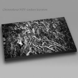 Naava - Chromaluxe taulu