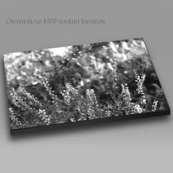 Kanerva mv - Chromaluxe taulu