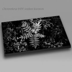 Mustikat ja pihlaja - Chromaluxe taulu