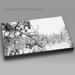 Lumiset oksat - Chromaluxe taulu
