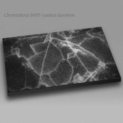 Särkyvä jää - Chromaluxe taulu