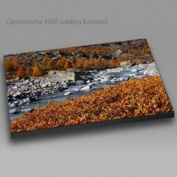 River VI - Chromaluxe picture
