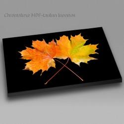 Maple leaves - Chromaluxe...