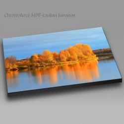 Fall colors at river II -...