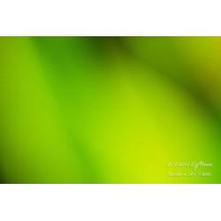 Vihreän sävyt - Canvas-taulu