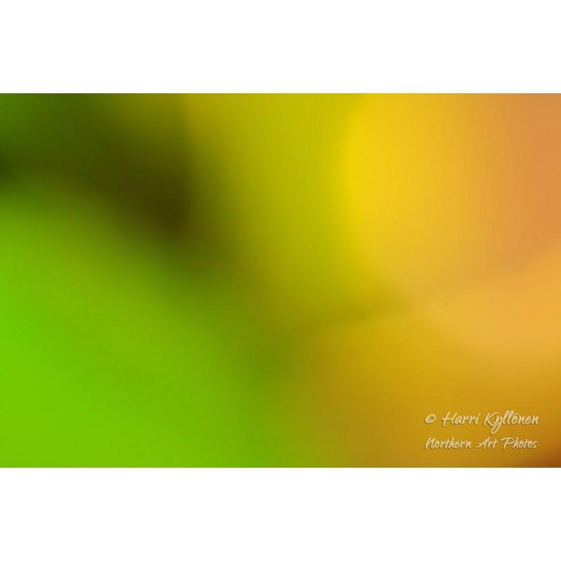 Värisävyt - Canvas-taulu