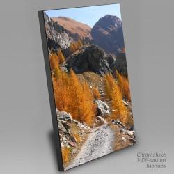 Mountain path autumn colours - Chromaluxe picture
