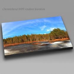 Jängän kevätpäivä - Chromaluxe taulu