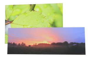Canvas prints online - Hundreds of pictures