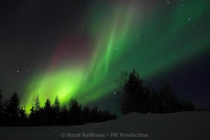Northern Lights Suorakaide canvas-taulut verkkokaupastamme