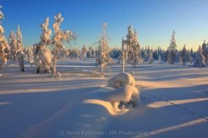 Talvi Suorakaide canvas-taulut verkkokaupastamme