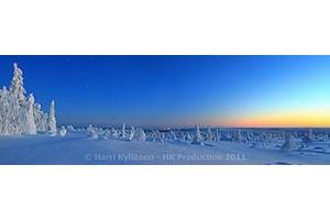 Talvi Panoraama canvas-taulut verkkokaupastamme