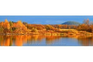 Autumn colours Panoraama canvas-taulut verkkokaupastamme