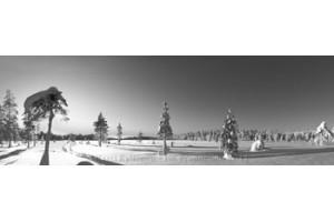 Mustavalkoiset Panoraama canvas-taulut verkkokaupastamme