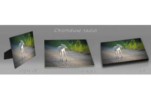 Luonto chromaluxe-taulut