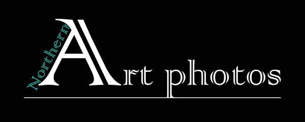 Northern Art Photos - logo